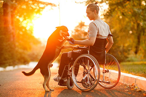 man in wheelchair with his dog